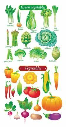 free vector Fruits and vegetables vector