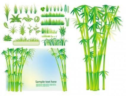 free vector Bamboo grass plant vector
