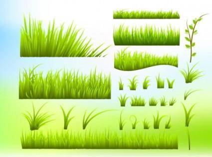 free vector Green grass vector