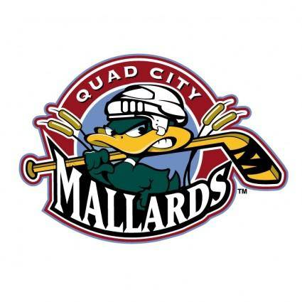 free vector Quad city mallards