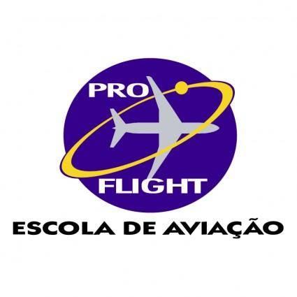 free vector Pro flight