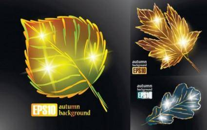 Sparkling autumn leaves vector