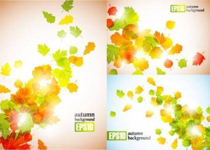 free vector Autumn leaves vector 2