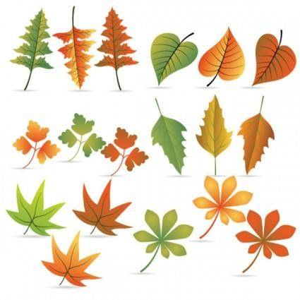 free vector Leaf 04 vector