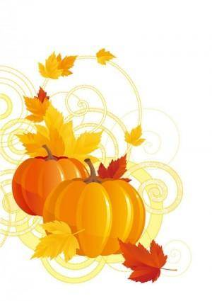 Pumpkin maple leaf vector