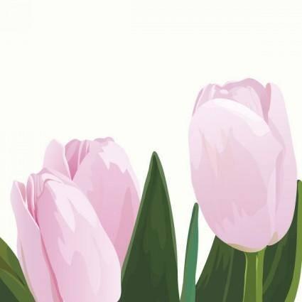 free vector Pink tulips vector