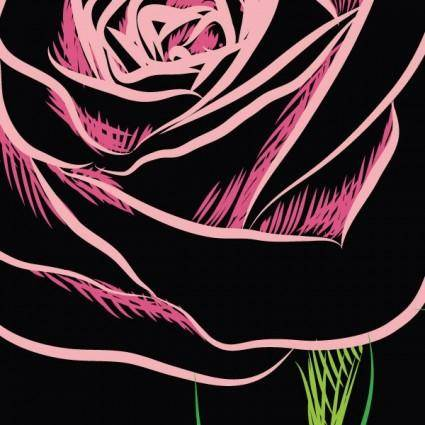 Roses vector 1 local