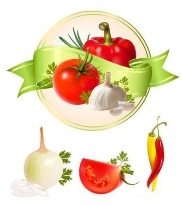 free vector Several vegetables vector