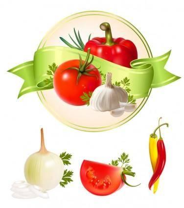 Several vegetables vector