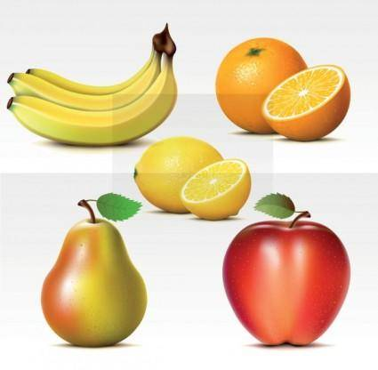 free vector Fresh fruits vector