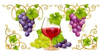 Grape and wine vector 4393