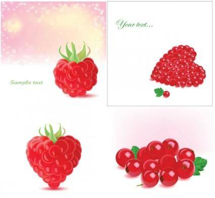 Vector romantic berries