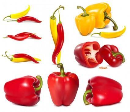 Fine chili peppers vector
