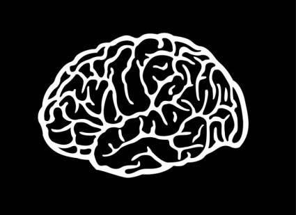 free vector Brain vector