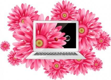 Daisy and beautiful laptop vector