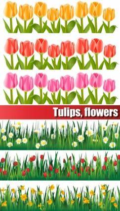 free vector Colorful tulips vector