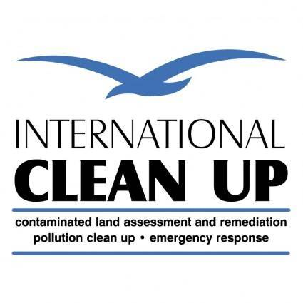 International clean up