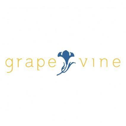 free vector Grapevine