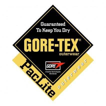 Gore tex outwear paclite