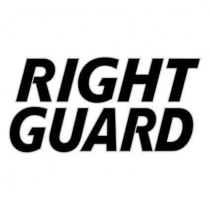 Gillette right guard