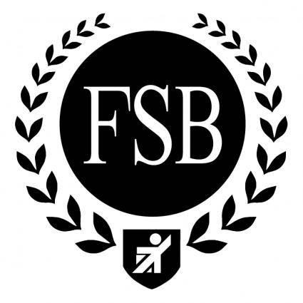 Fsb 3