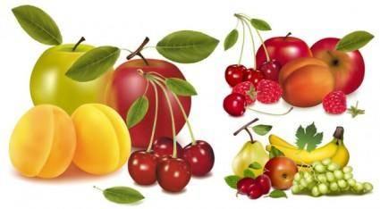 Fruits vector 4708