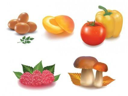free vector Healthy food vector