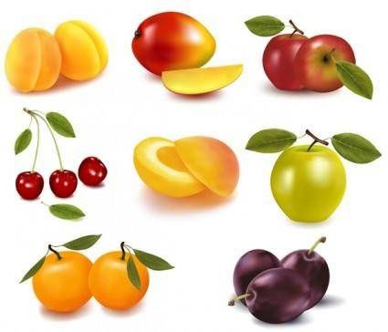 free vector Eight kinds of fruits vector