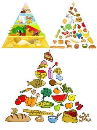 free vector 3 food pyramid vector