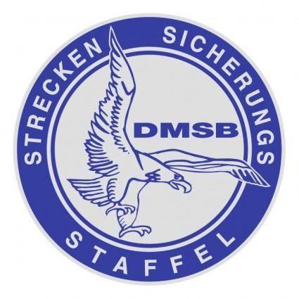 Dmsb 1