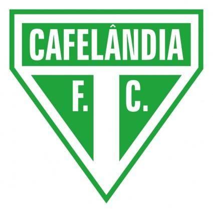 Cafelandia futebol clube de cafelandia sp
