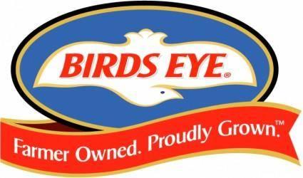 free vector Birds eye 1