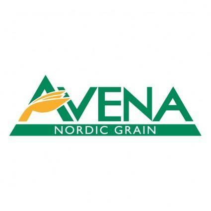 Avena nordic grain