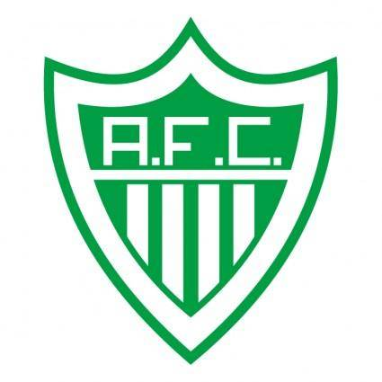Alfenense futebol clube de alfenas mg