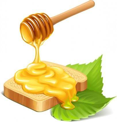 free vector Vector honey bread