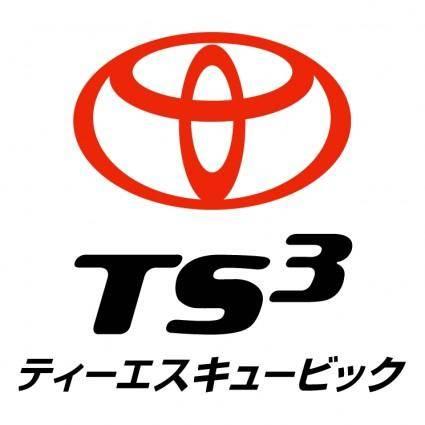 Ts3 card