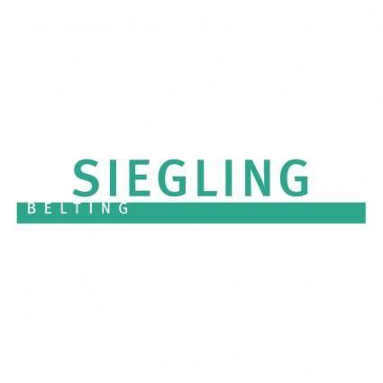 free vector Siegling belting