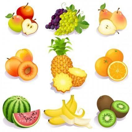 Fresh fruits vector 5352