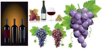 free vector Wine grapes vector