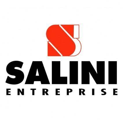 free vector Salini