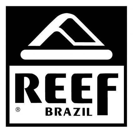 free vector Reef brazil