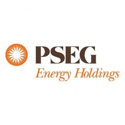 Pseg energy holding