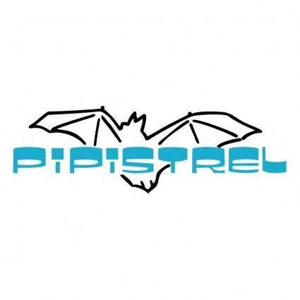 free vector Pipistrel