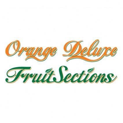 Orange deluxe fruit sections