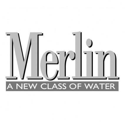 free vector Merlin