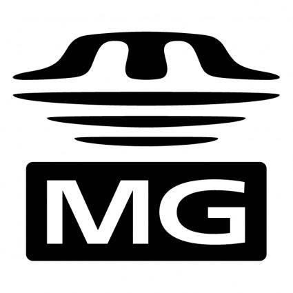 Memory stick mg