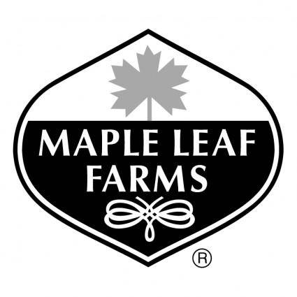 free vector Maple leaf farms