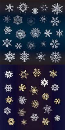 A variety of beautiful snowflakes vector