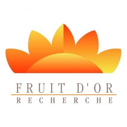 Fruit dor recherche