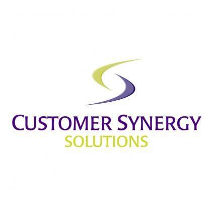 Customer synergy solutions